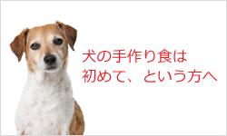 犬のための手作り食8日間無料メールセミナー